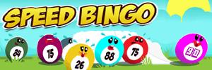 bingo-30-boules